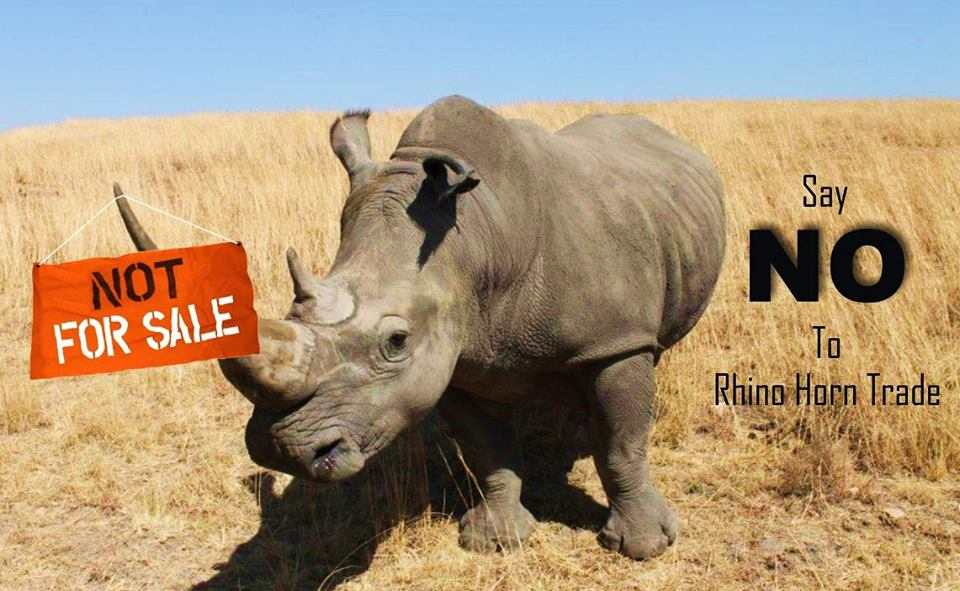 say-no-to-rhino-horn-trade-iarf-africa