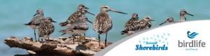savewaterbirds