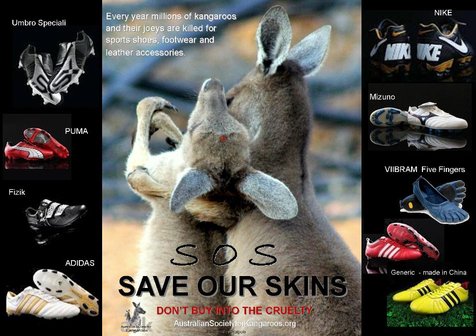Save-Kangaroos-Skin