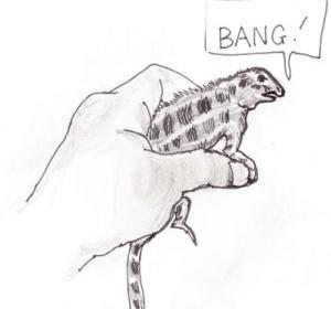 dragon-bang