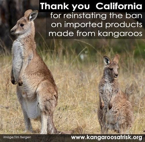 Thankyou California