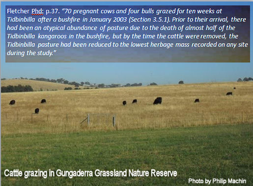 effects-cattle-grazing-tidbinbilla-fletcher