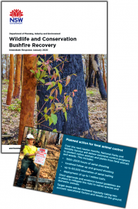 wildlife-cons-bushfire-recovery