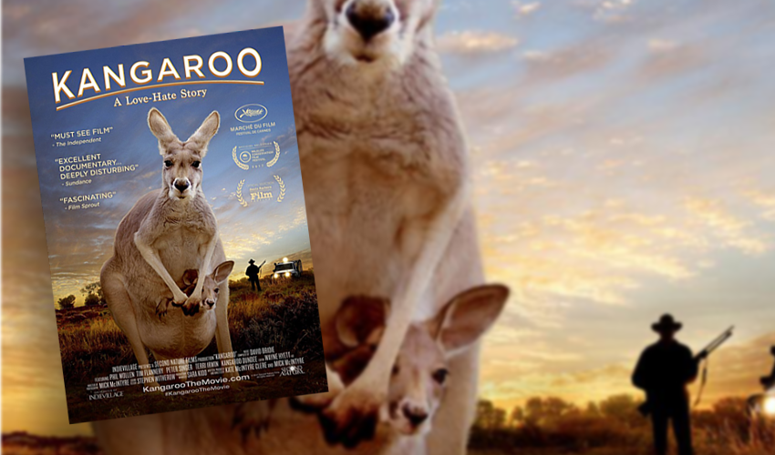 KANGAROO-MOVIE-feature-awpc