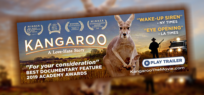 Kangaroo-europe-update-jan2020