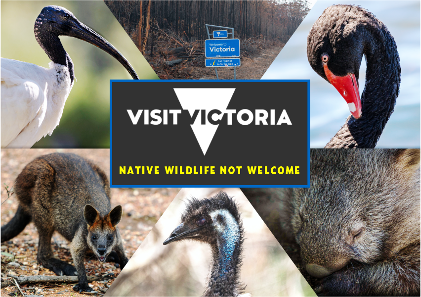 Victoria-state-border-signage