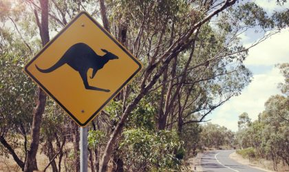 Kangaroo-signage-Vict-road-cr-Jodie-Johnson