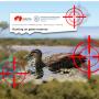 South-Aust-duck-shooting-season-2021