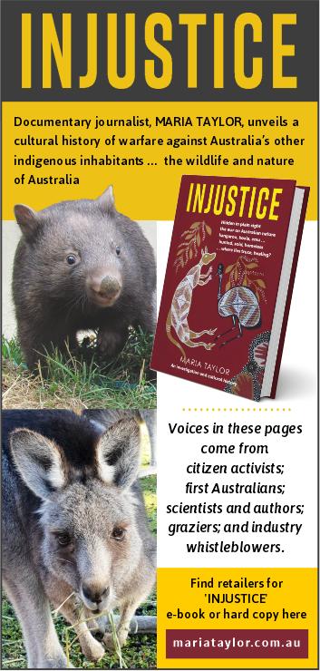 Injustice-book promo-web-June 2021
