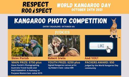 world-kangaroo-day-photo-comp